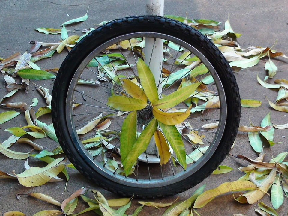 Bike Rims: How to Choose the Best